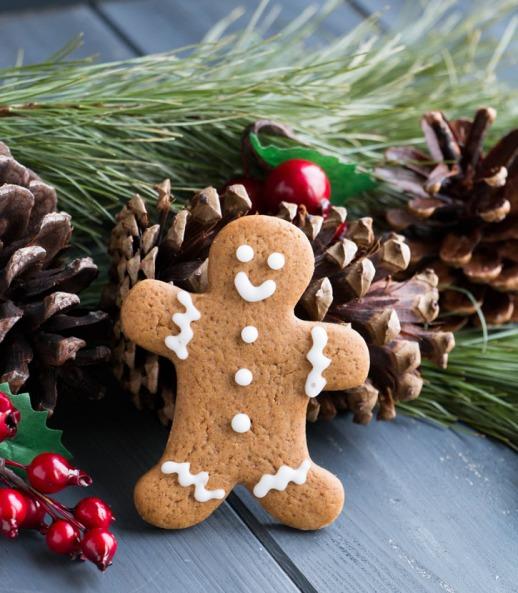 soft-gingerbread-cookies-9